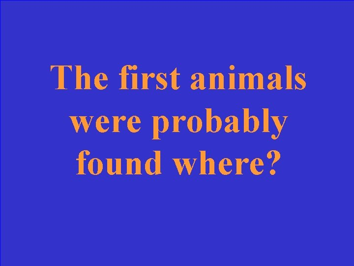 The first animals were probably found where?