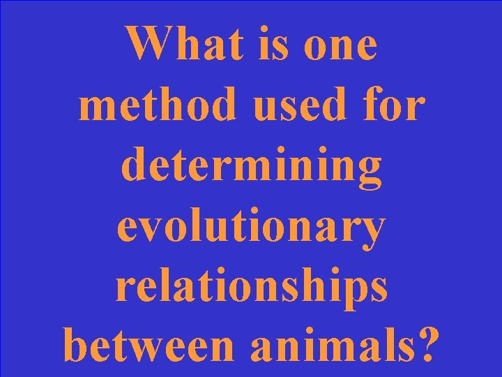 What is one method used for determining evolutionary relationships between animals?
