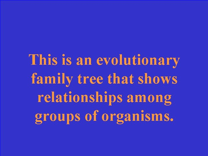 This is an evolutionary family tree that shows relationships among groups of organisms.