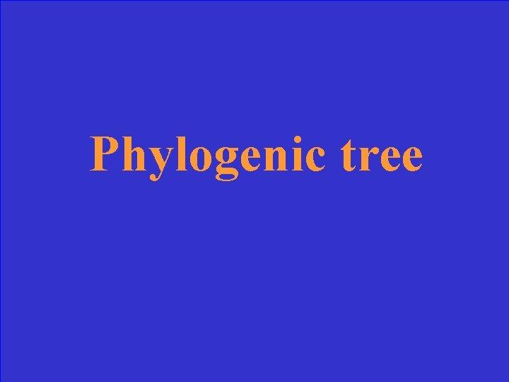 Phylogenic tree