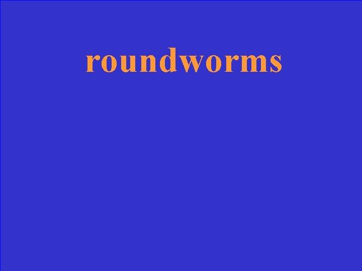 roundworms