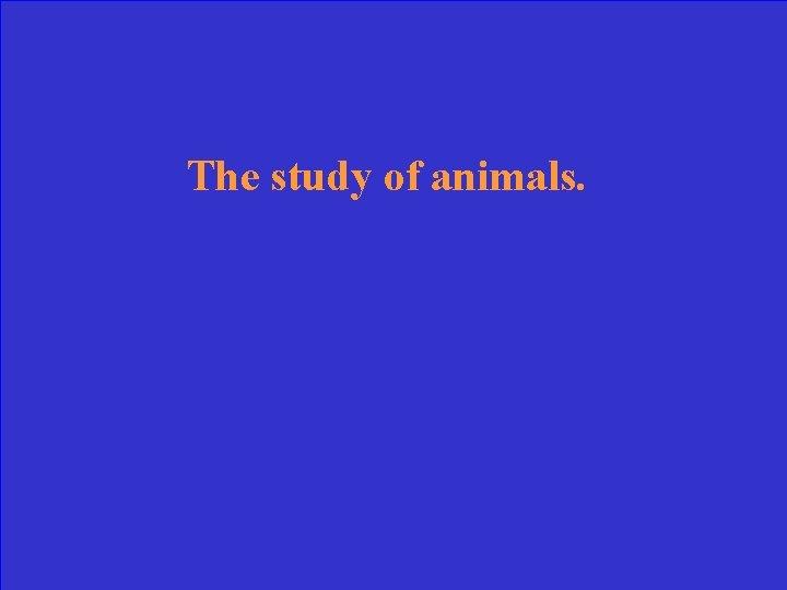 The study of animals.