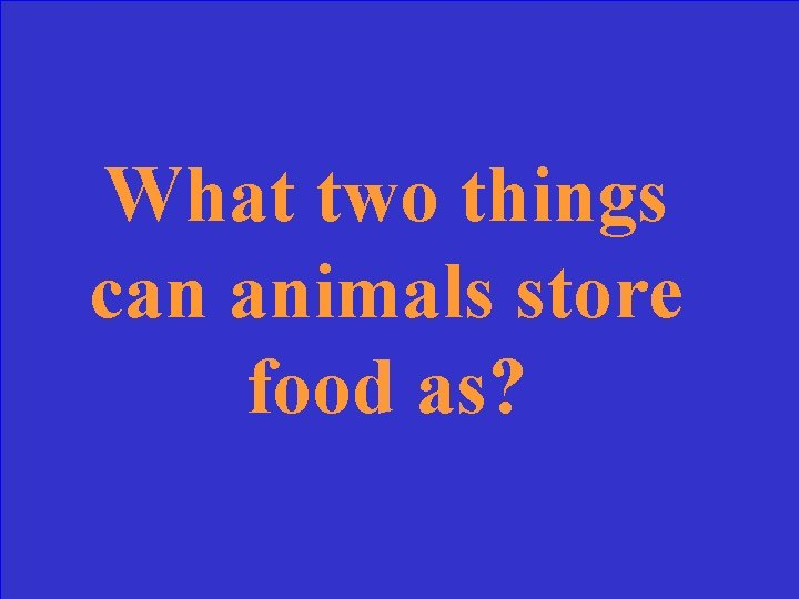 What two things can animals store food as?