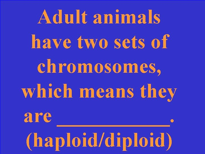Adult animals have two sets of chromosomes, which means they are ______. (haploid/diploid)