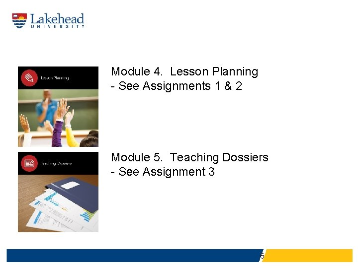 Module 4. Lesson Planning - See Assignments 1 & 2 Module 5. Teaching Dossiers