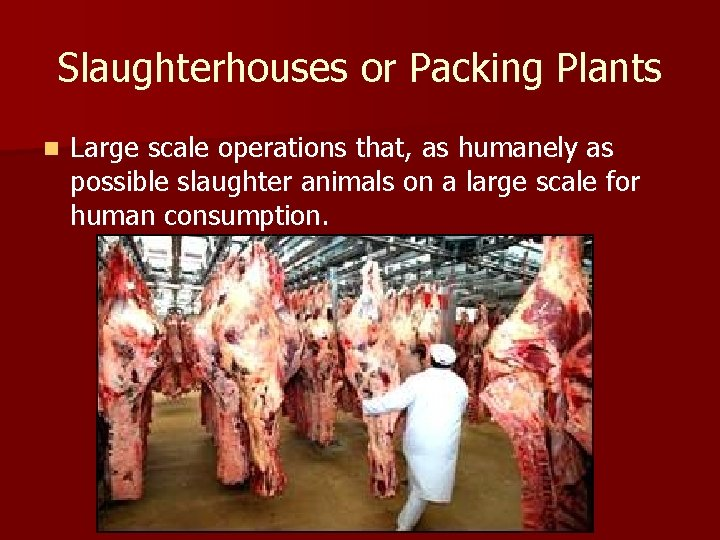 Slaughterhouses or Packing Plants n Large scale operations that, as humanely as possible slaughter