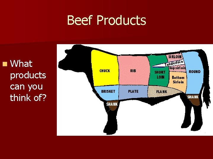 Beef Products n What products can you think of?