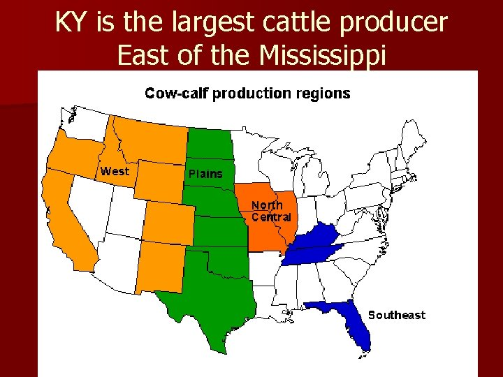 KY is the largest cattle producer East of the Mississippi