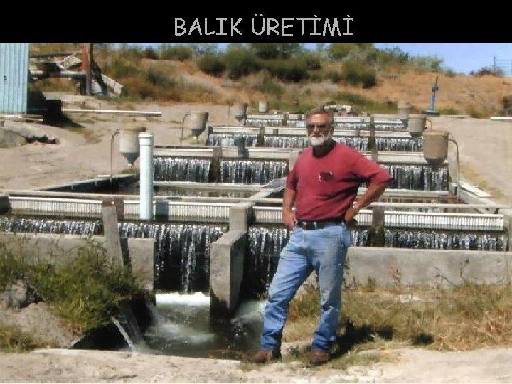 BALIK ÜRETİMİ