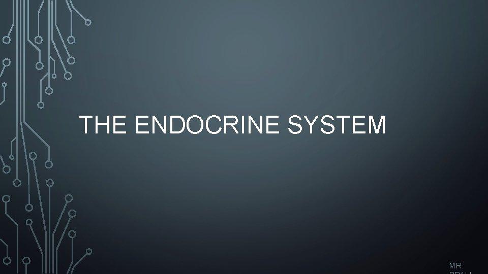 THE ENDOCRINE SYSTEM MR.