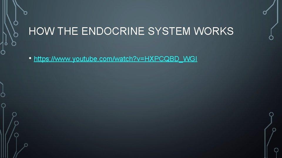 HOW THE ENDOCRINE SYSTEM WORKS • https: //www. youtube. com/watch? v=HXPCQBD_WGI
