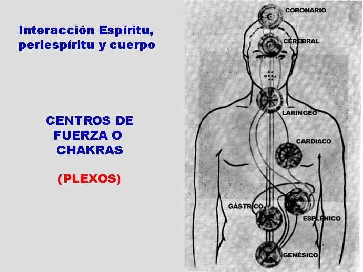 Interacción Espíritu, periespíritu y cuerpo CENTROS DE FUERZA O CHAKRAS (PLEXOS) El Pase Espírita