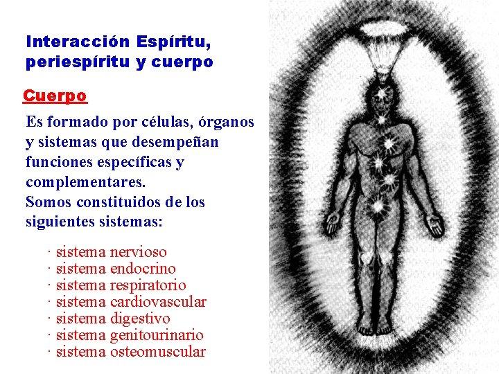 Interacción Espíritu, periespíritu y cuerpo Cuerpo Es formado por células, órganos y sistemas que