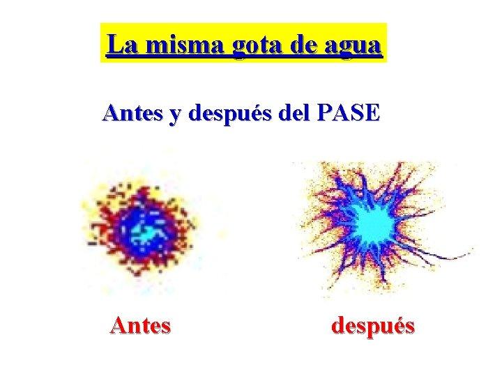 La misma gota de agua Antes y después del PASE Antes después