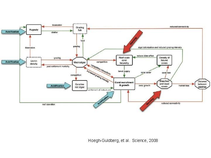 Hoegh-Guldberg, et al. Science, 2008