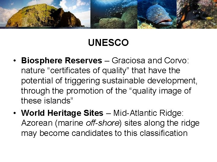 """UNESCO • Biosphere Reserves – Graciosa and Corvo: nature """"certificates of quality"""" that have"""