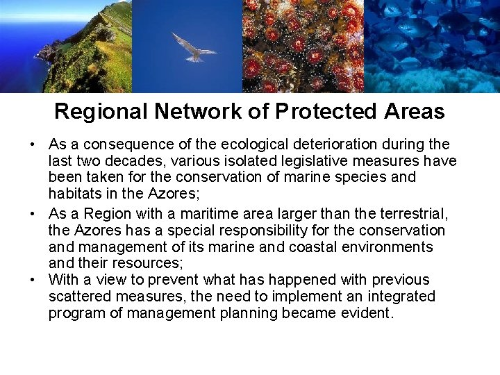 Regional Network of Protected Areas • As a consequence of the ecological deterioration during
