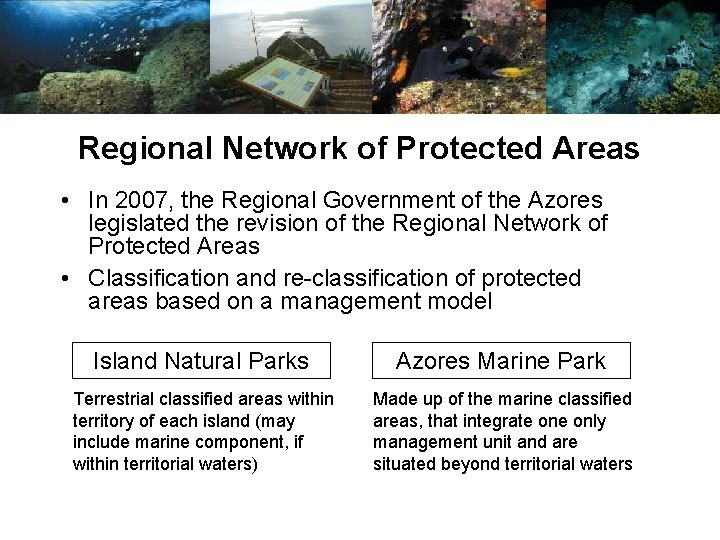 Regional Network of Protected Areas • In 2007, the Regional Government of the Azores