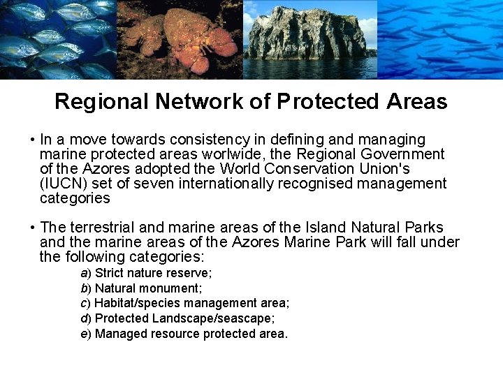 Regional Network of Protected Areas • In a move towards consistency in defining and