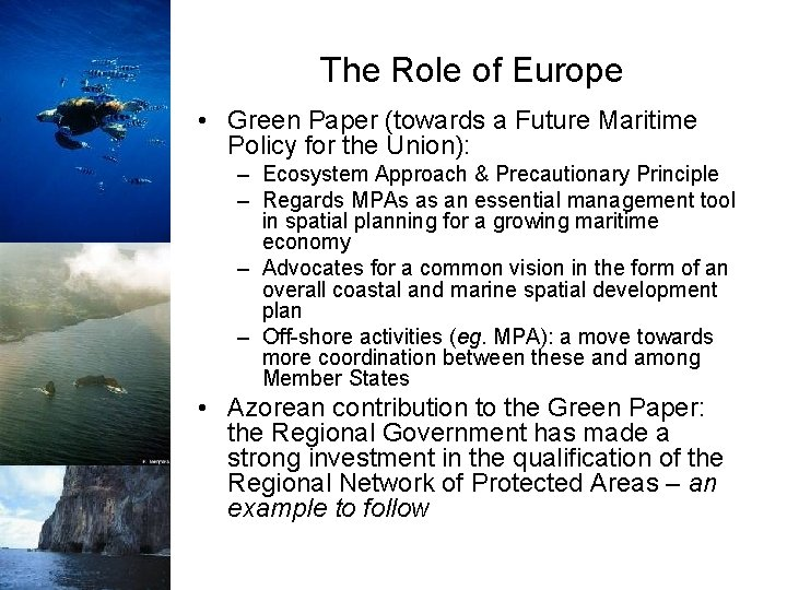 The Role of Europe • Green Paper (towards a Future Maritime Policy for the