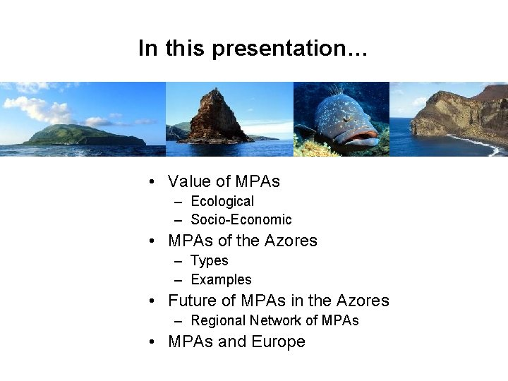 In this presentation… • Value of MPAs – Ecological – Socio-Economic • MPAs of