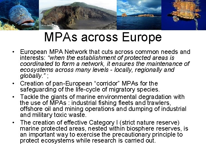 MPAs across Europe • European MPA Network that cuts across common needs and interests:
