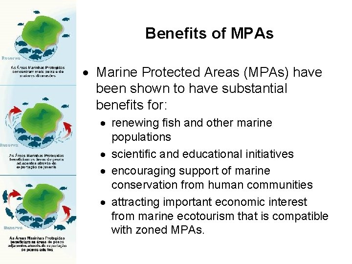 Benefits of MPAs Marine Protected Areas (MPAs) have been shown to have substantial benefits