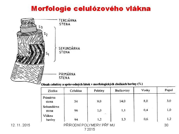 Morfologie celulózového vlákna 12. 11. 2015 PŘÍRODNÍ POLYMERY PŘF MU 7 2015 30