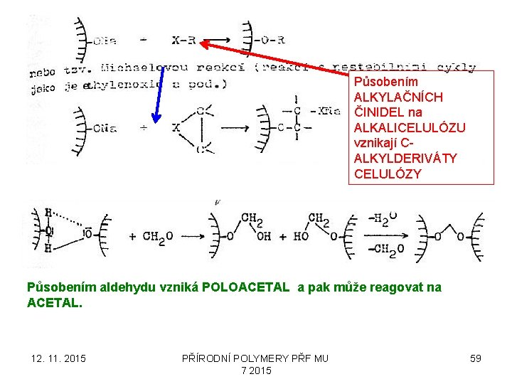 Působením ALKYLAČNÍCH ČINIDEL na ALKALICELULÓZU vznikají CALKYLDERIVÁTY CELULÓZY Působením aldehydu vzniká POLOACETAL a pak