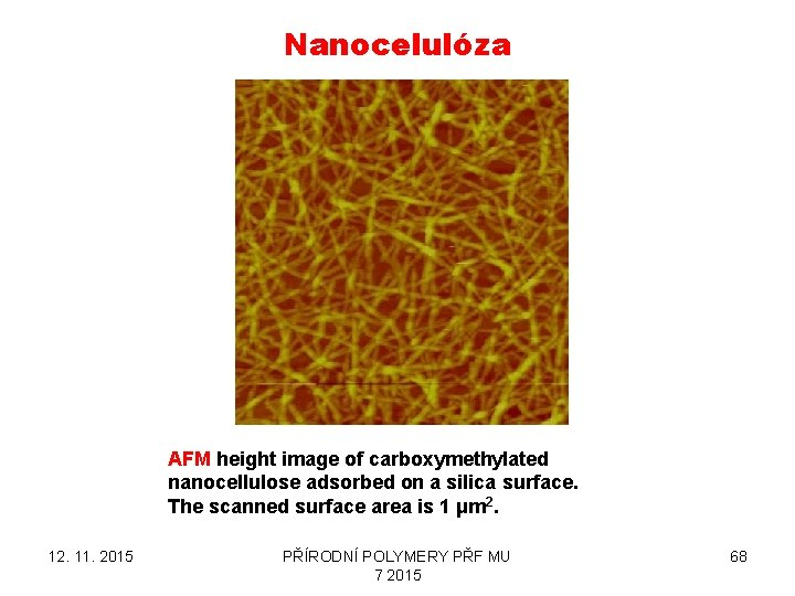 Nanocelulóza AFM height image of carboxymethylated nanocellulose adsorbed on a silica surface. The scanned