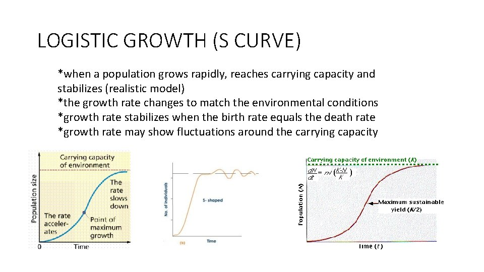 LOGISTIC GROWTH (S CURVE) *when a population grows rapidly, reaches carrying capacity and stabilizes
