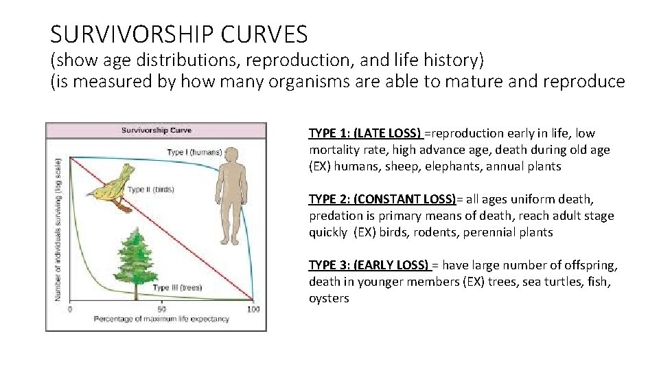 SURVIVORSHIP CURVES (show age distributions, reproduction, and life history) (is measured by how many
