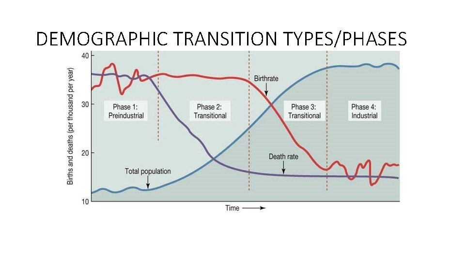 DEMOGRAPHIC TRANSITION TYPES/PHASES