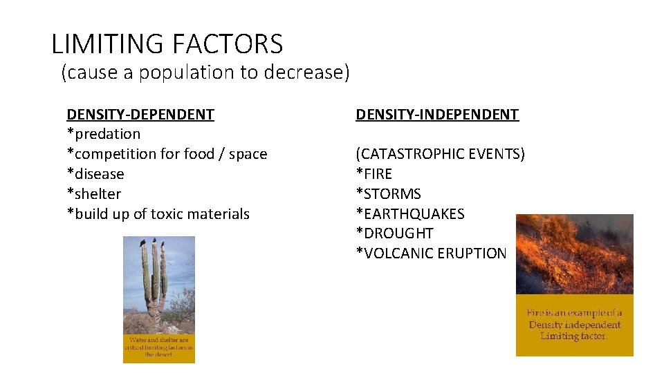 LIMITING FACTORS (cause a population to decrease) DENSITY-DEPENDENT *predation *competition for food / space