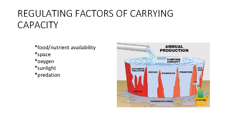 REGULATING FACTORS OF CARRYING CAPACITY *food/nutrient availability *space *oxygen *sunlight *predation