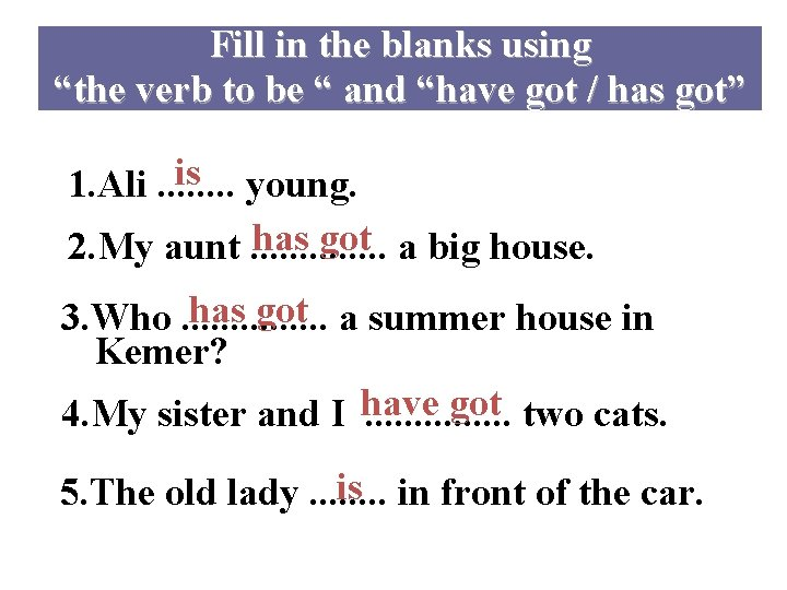 """Fill in the blanks using """"the verb to be """" and """"have got /"""