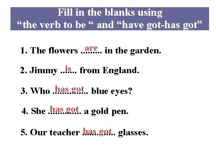 """Fill in the blanks using """"the verb to be """" and """"have got-has got"""""""