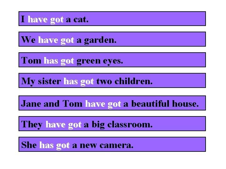 I have got a cat. We have got a garden. Tom has got green