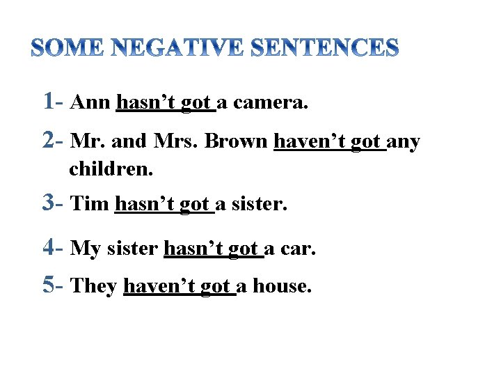 1 - Ann hasn't got a camera. 2 - Mr. and Mrs. Brown haven't