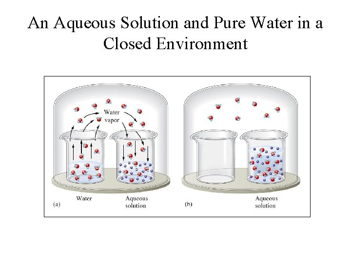 An Aqueous Solution and Pure Water in a Closed Environment