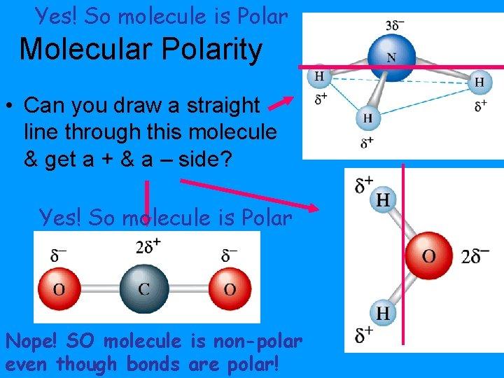 Yes! So molecule is Polar Molecular Polarity • Can you draw a straight line