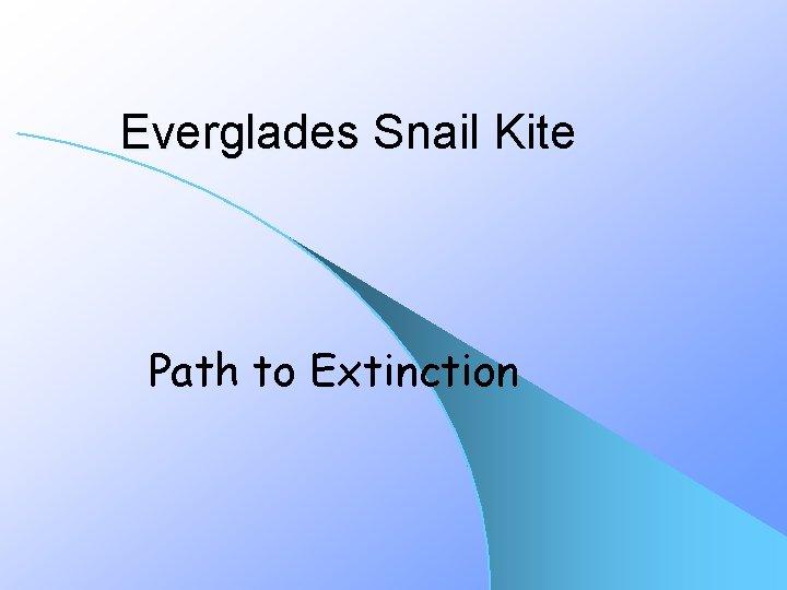 Everglades Snail Kite Path to Extinction