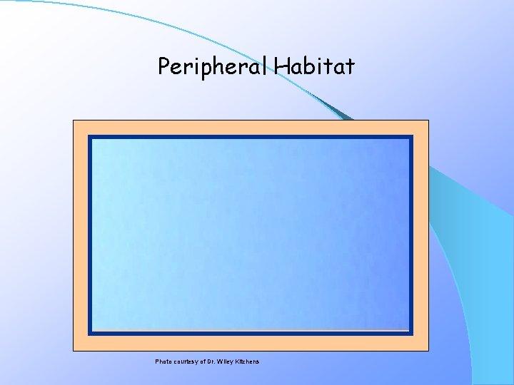 Peripheral Habitat Photo courtesy of Dr. Wiley Kitchens