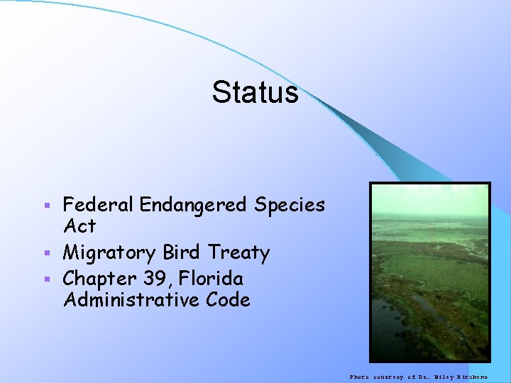 Status Federal Endangered Species Act § Migratory Bird Treaty § Chapter 39, Florida Administrative