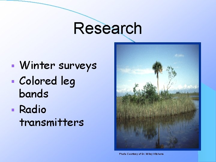 Research Winter surveys § Colored leg bands § Radio transmitters § Photo Courtesy of