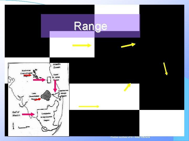 Range Photos courtesy of Dr. Wiley Kitchens