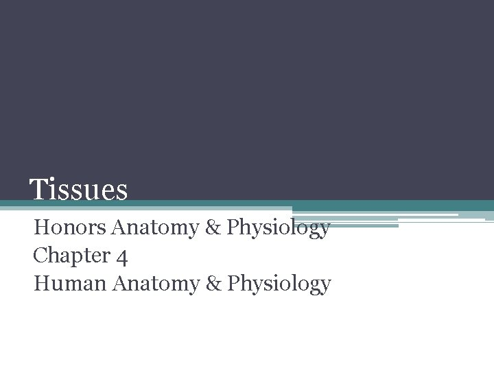 Tissues Honors Anatomy & Physiology Chapter 4 Human Anatomy & Physiology