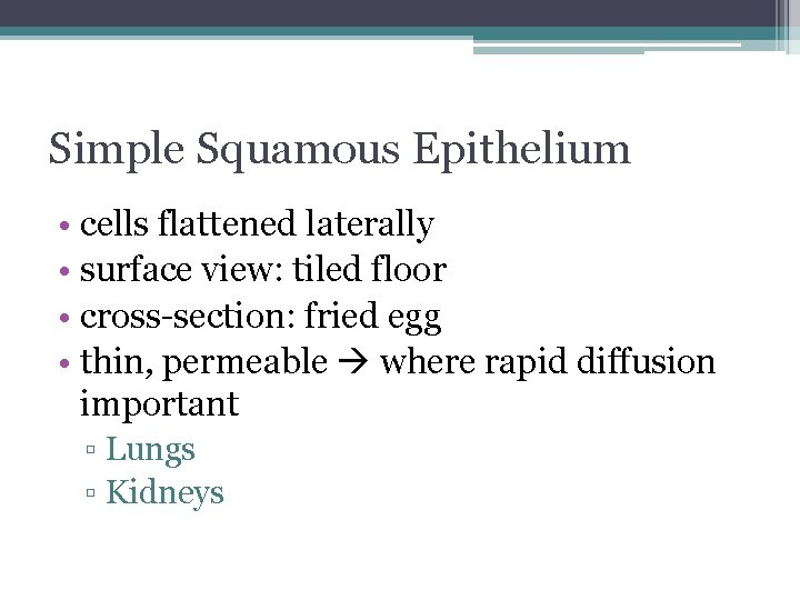 Simple Squamous Epithelium • cells flattened laterally • surface view: tiled floor • cross-section: