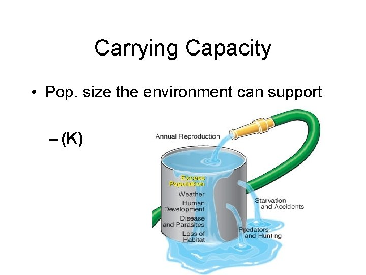 Carrying Capacity • Pop. size the environment can support – (K)