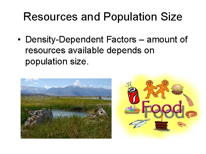 Resources and Population Size • Density-Dependent Factors – amount of resources available depends on